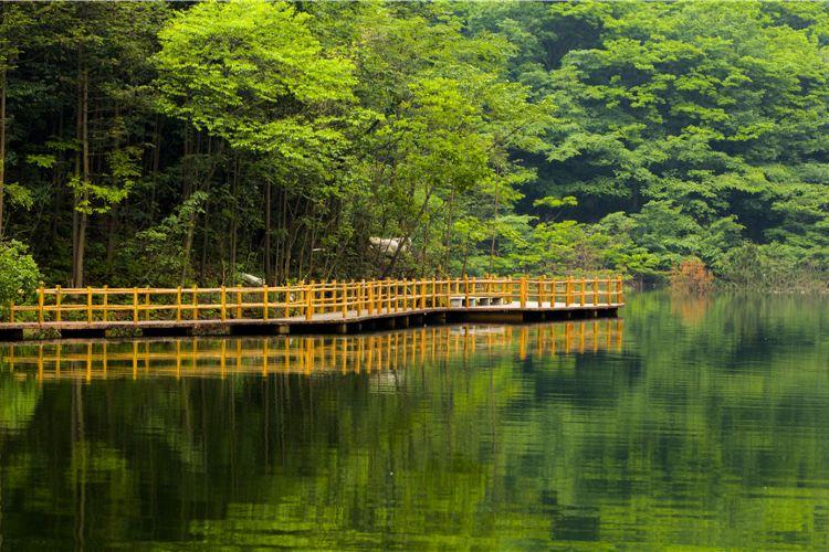 金剛台(西河)生態旅遊區3
