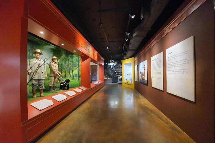 Teseum泰迪熊博物館3