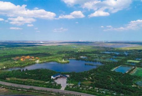 Shouguang Forest Ecological Expo Park