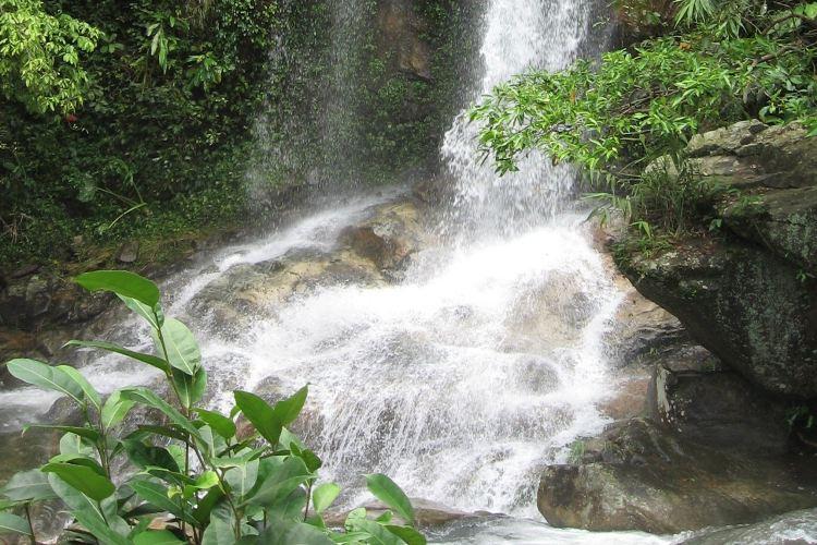 Tianma Mountain Ecotourism Resort1