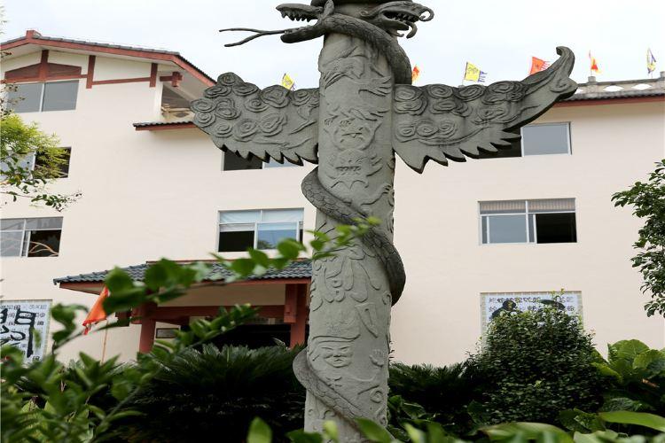 Wuyi Snake Garden3