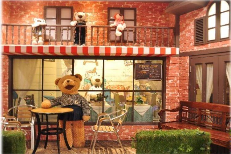 Teddy Bear Safari4