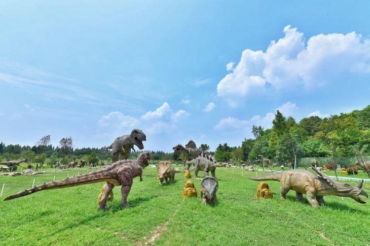 Hangzhou Konglong Meng Park4