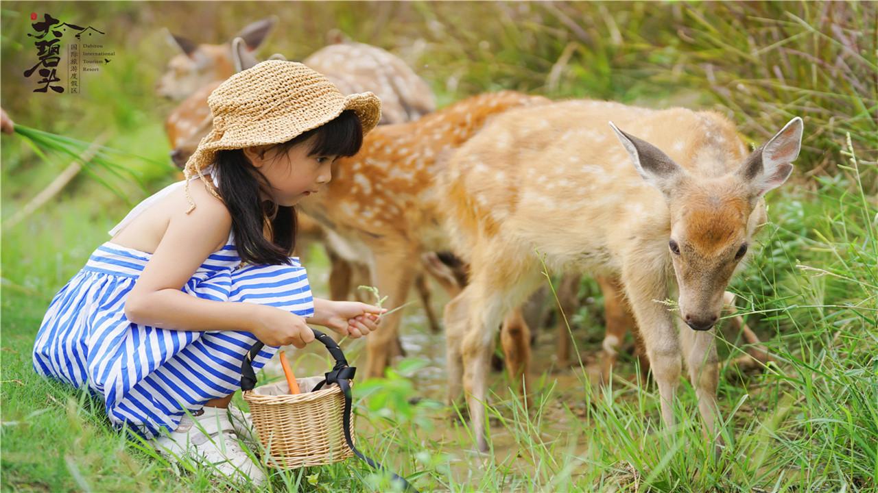 大碧頭國際旅遊度假區