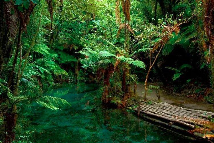 彩虹泉自然公園1