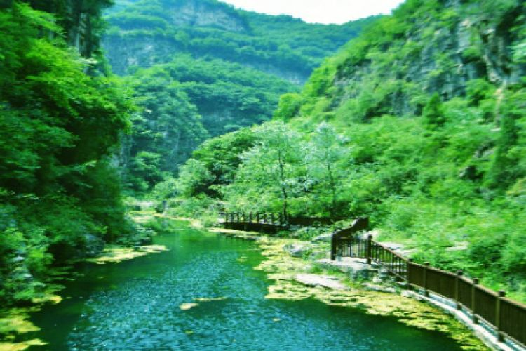 Tongtianxia Scenic Area4