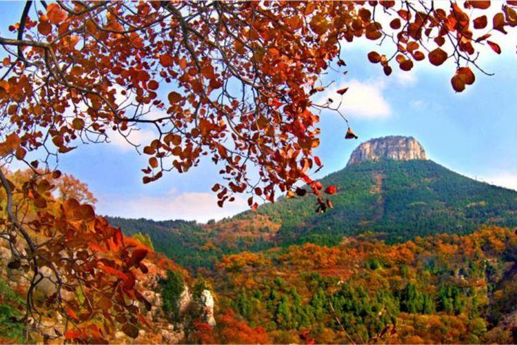 Baodugu National Forest Park1