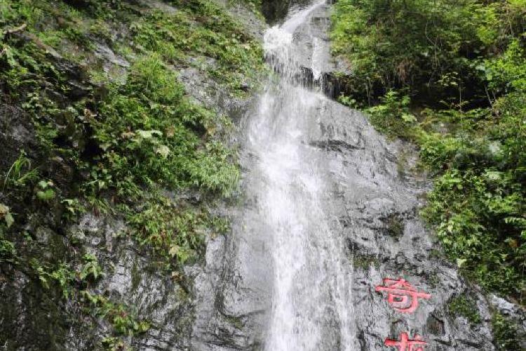 Niumulin Nature Reserve2