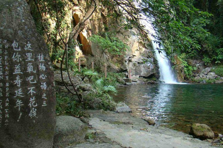 Tianma Mountain Ecotourism Resort3