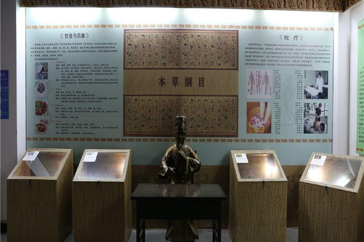 Wuyi Snake Garden1