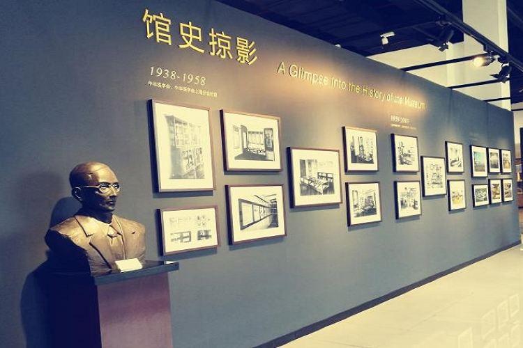 Shanghaizhongyiyao Museum3