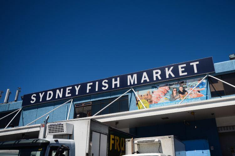 悉尼魚市2