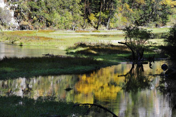 Arrow Bamboo Lake3