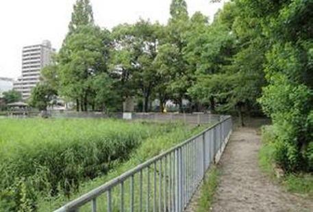 索科爾尼基公園