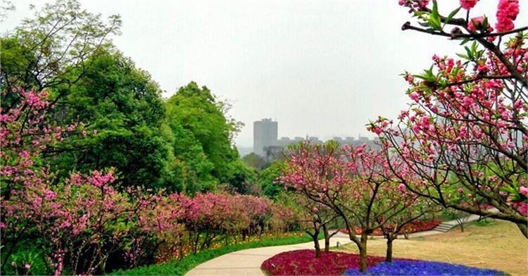 청두 식물원3
