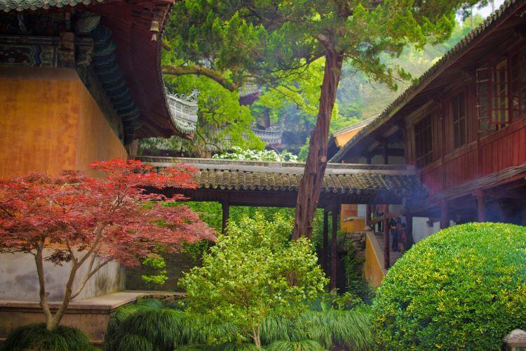 Guoqing Scenic Area3