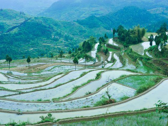 Ming'ao Terrace