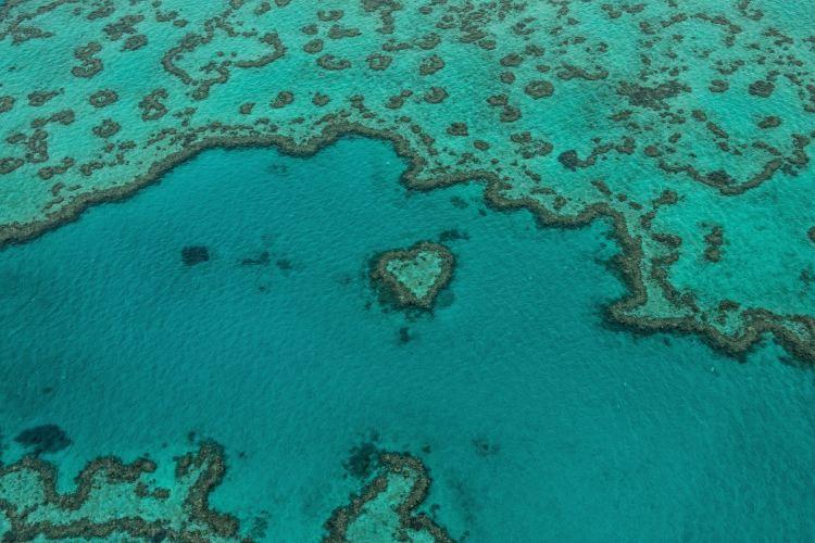 心形大堡礁2