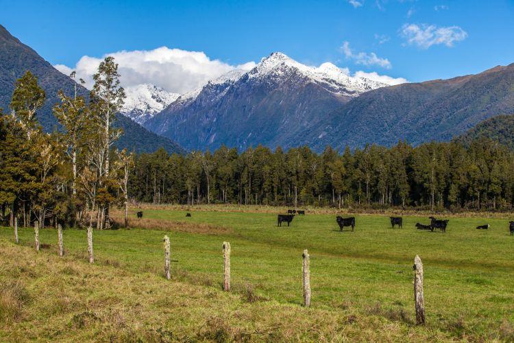Arthur's Pass National Park1