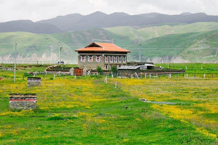 Lhagang Grassland1