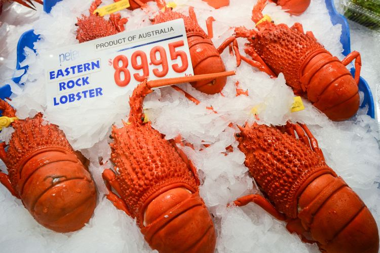 Sydney Fish Market3