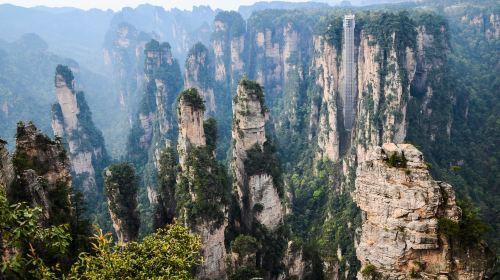 장가계 국가삼림공원(장자제 국가삼림공원)
