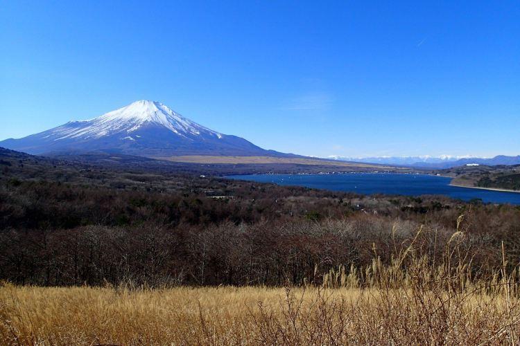 富士箱根伊豆國立公園1