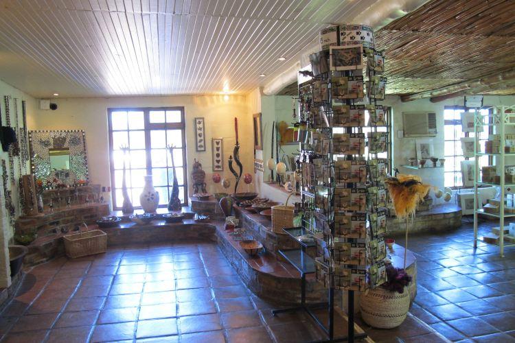 鴕鳥農場1