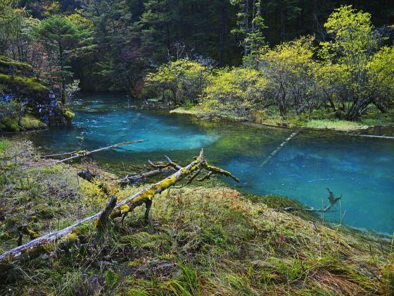Rizegou Landscape