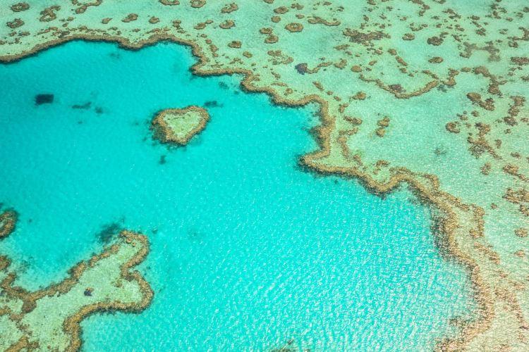 心形大堡礁3