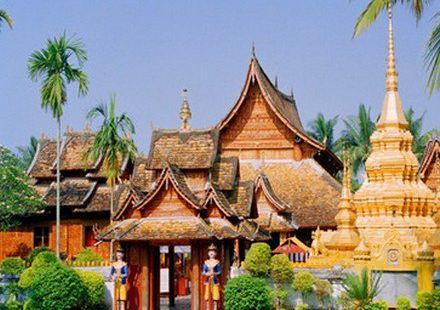 熱帶風情茶園