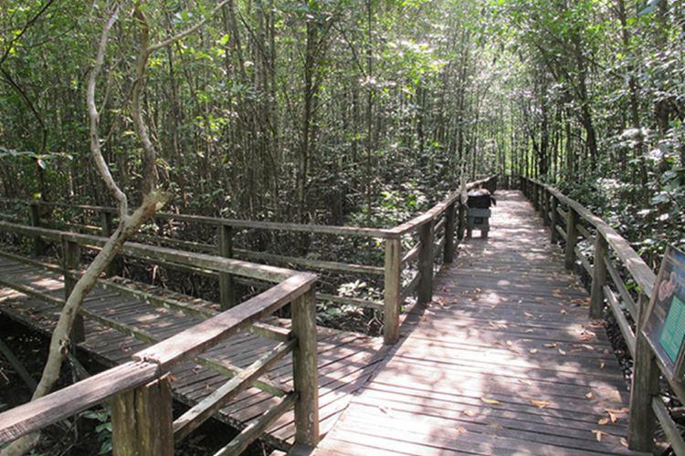 Kota Kinabalu Wetland Centre4