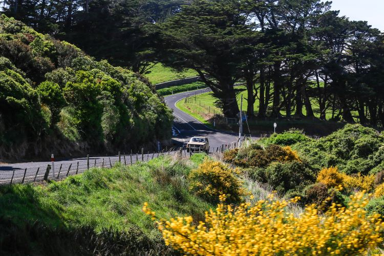 Otago Peninsula2