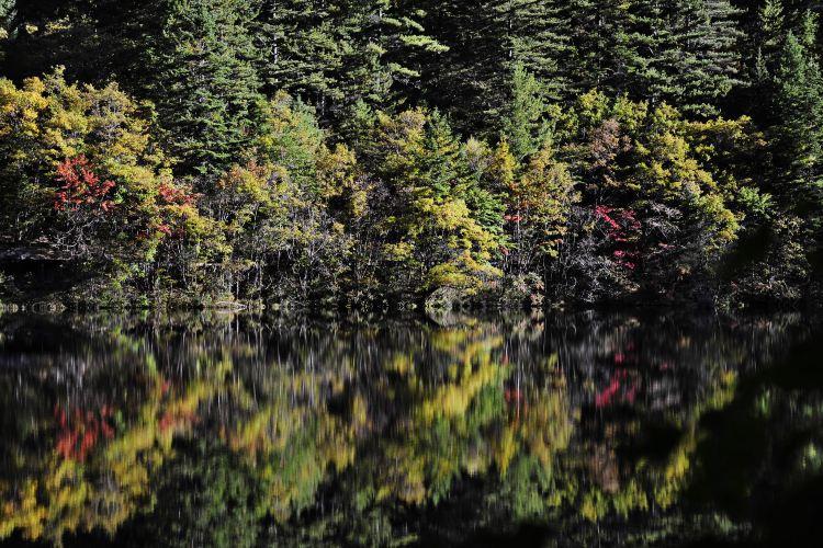 Mirror Lake1
