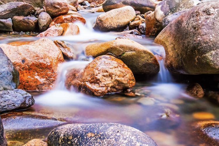 鄣山大峽谷3