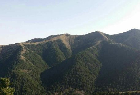 Mt. Luoshan National Nature Reserve