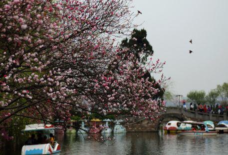 리호중앙공원