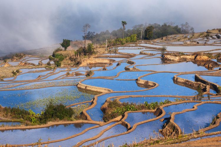 Honghe Hani Rice Terraces3