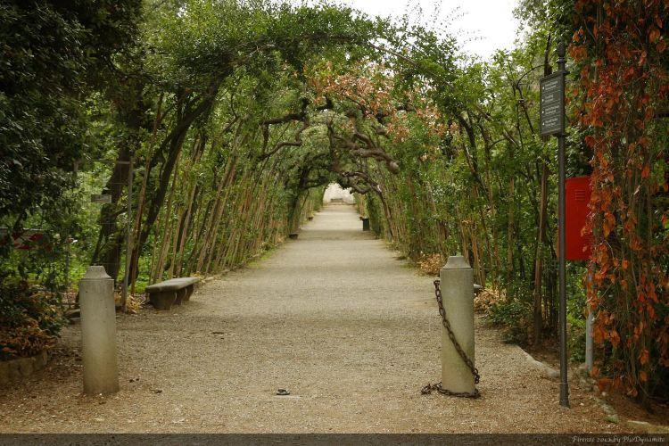 Boboli Gardens3