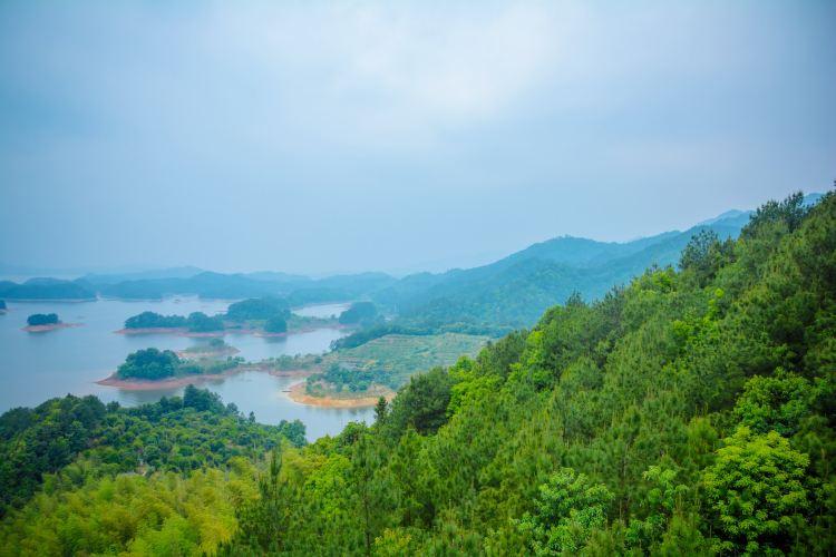 千島湖景區3