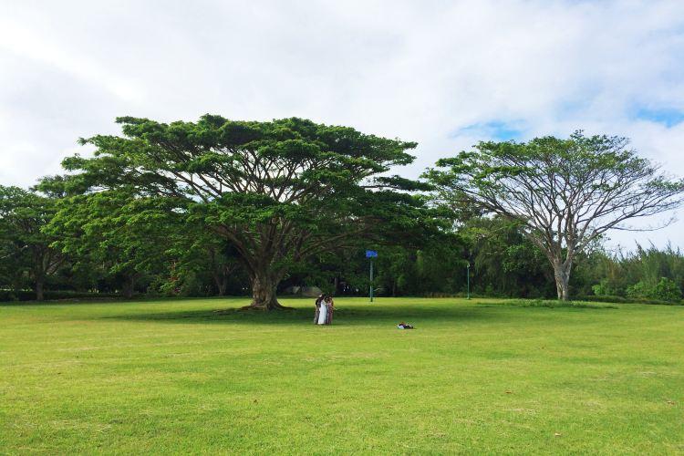 American Memorial Park2