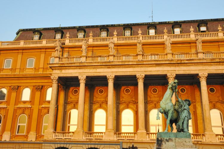 Buda Castle2