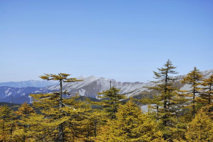 Qinling Mountains2