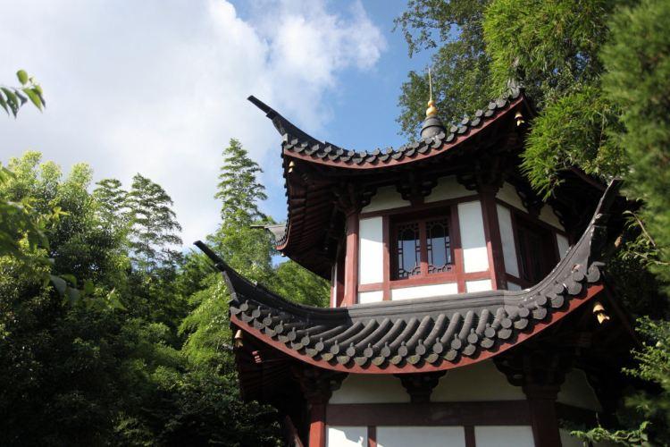 서산 국립산림공원3