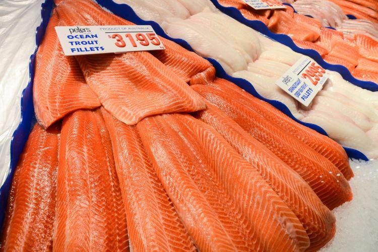 Sydney Fish Market1