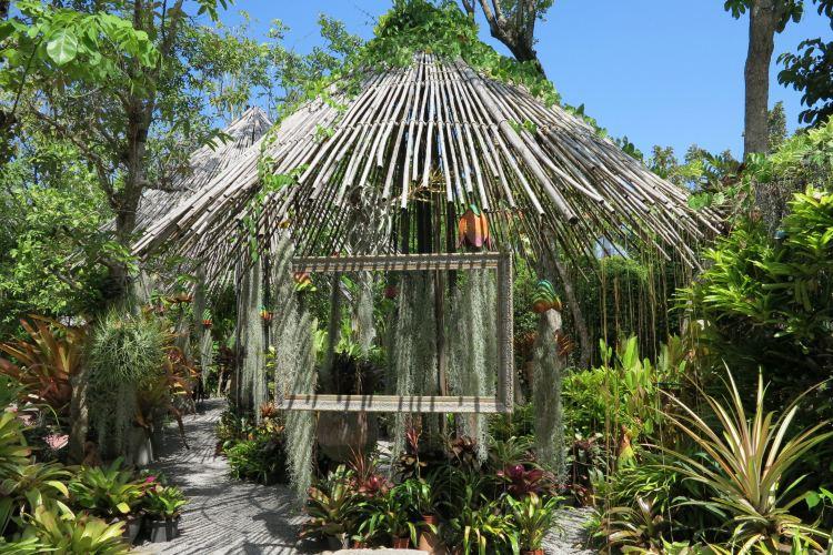 普吉島植物園2