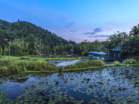 呀諾達雨林文化旅遊區