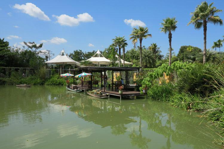 普吉島植物園3