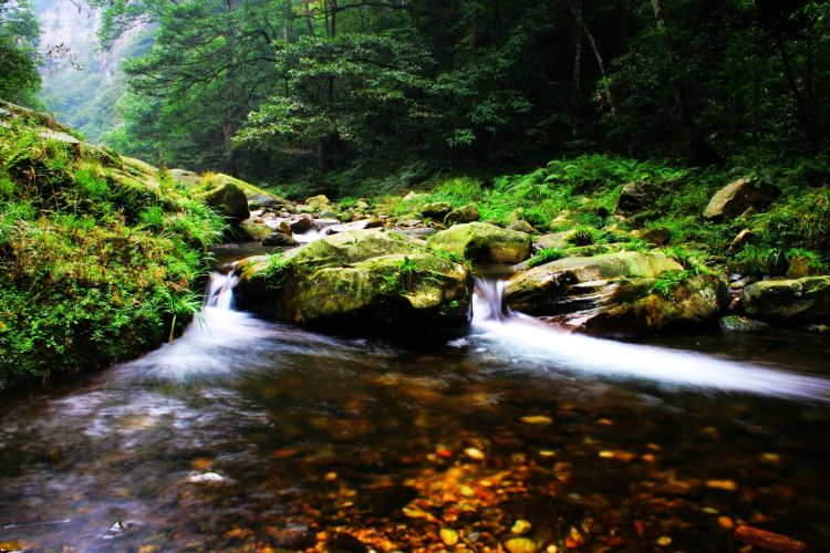 Golden Whip Stream (Jinbian Stream)1