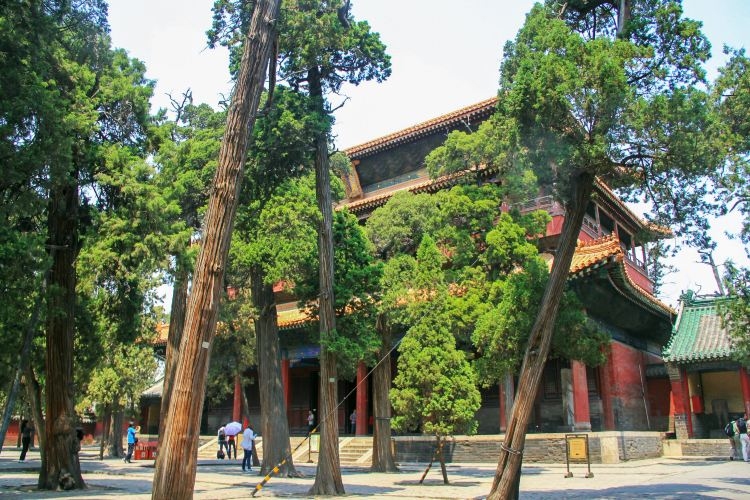 Temple of Confucius1